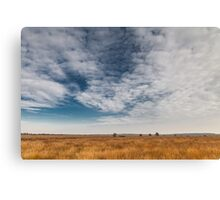 Wide skies over Holland Canvas Print