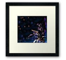 Magical Garden at Midnight Framed Print