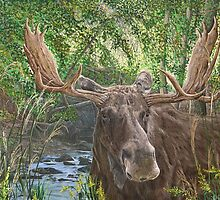 EARLY RISER - MOOSE by Martin Wilneff