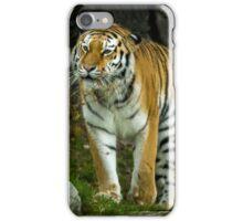 Tiger, Tiger... iPhone Case/Skin