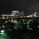 CITY LIGHTS  by FL-florida