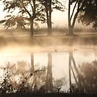 PEA SOUP FOG AT THE POND by Pauline Evans