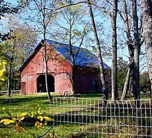 A Pretty Barn by Pauline Evans