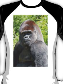 """An intimate portrait close-up 3 (c) (h) """"Back Silver"""" A gorilla who is the star of the day .... T-Shirt"""