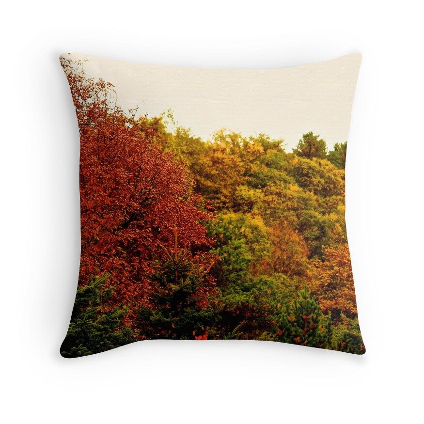 Decorative Pillows For Fall :