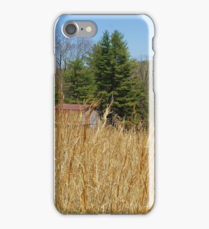 Blue Ridge Parkway iPhone Case/Skin