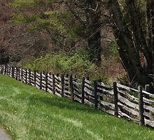 Blue Ridge Parkway by paulboggs