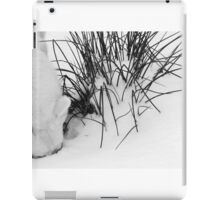 Beneath the Snow iPad Case/Skin