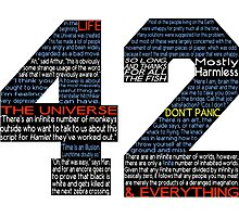 Hitchhiker's Guide 42 Quotes Photographic Print