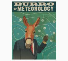 Burro of Meteorology One Piece - Short Sleeve