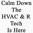 Calm Down The HVAC & R Tech Is Here  by supernova23