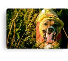 The 50 Acre Wood Canvas Print