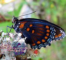 just butterflies by LoreLeft27