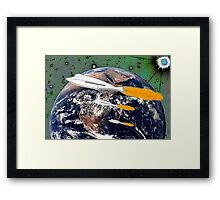 Dolphin Evolution Framed Print