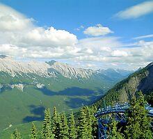 From Sulphur Mountain, High Rockies, Midsummer 1993 by Priscilla Turner