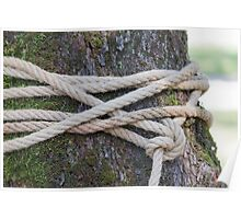 rope around the tree Poster
