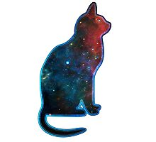 Space cat, Universe, Kosmos, Galaxy, Star Photographic Print