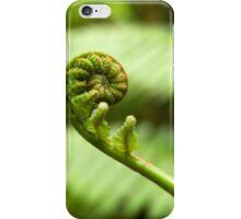 Fiddlehead - Pohnpei, Micronesia iPhone Case/Skin