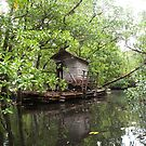 Houseboat - Pohnpei, Micronesia by Alex Zuccarelli