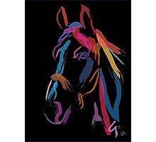 Horse - Colour me beautiful Photographic Print