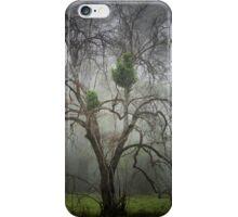 The Haunting - Mt Irvine NSW Australia iPhone Case/Skin