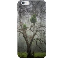 The Haunting - Mt Irvine NSW Australia iPhone Case/Skin
