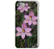 Thelymitra rubra (Salmon Sun-orchid)  iPhone Case/Skin