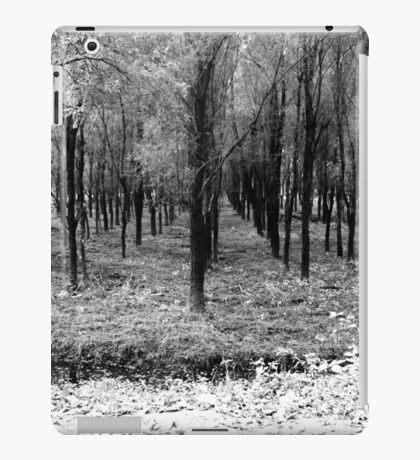 Autumn woods bw iPad Case/Skin