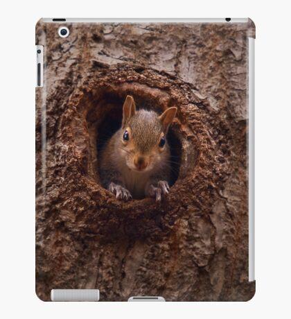 NUTS ? iPad Case/Skin