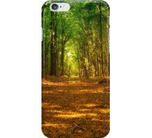 In the woods colorful iPhone Case/Skin