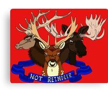 Not Reindeer Canvas Print