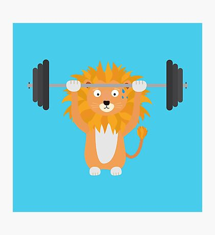 Weight lifting lion Photographic Print