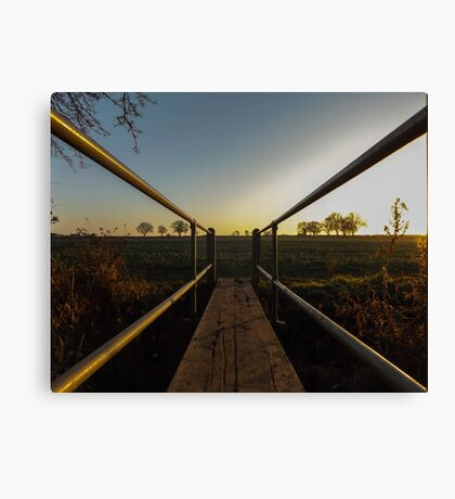 another world  Canvas Print