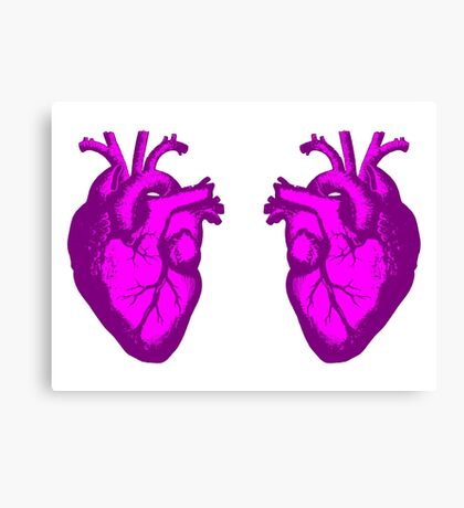 i <3 <3 the doctor Canvas Print