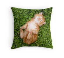 Puppy red cat Throw Pillow