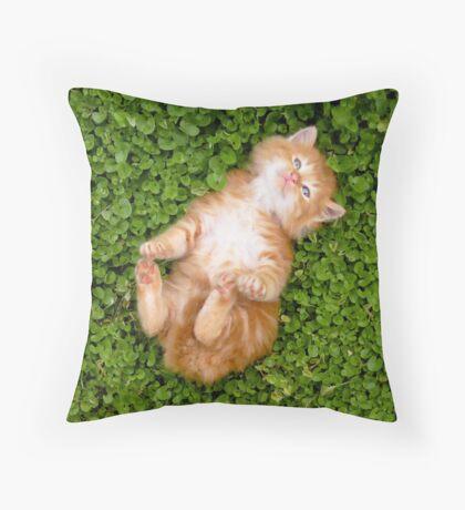 Puppy red cat Throw Pillow