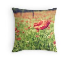 Vintage red poppies on green field Throw Pillow