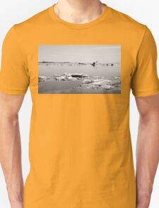 Icing on the Lake T-Shirt
