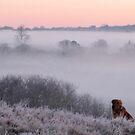mist II by uncleblack