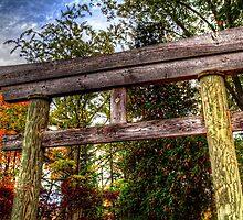 Entry Gate Fabyan Japanese Gardens by Roger Passman