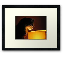 The Discovery Framed Print