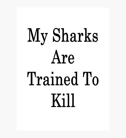 My Sharks Are Trained To Kill  Photographic Print