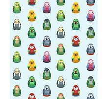 Parrot Nesting Doll Pattern Photographic Print
