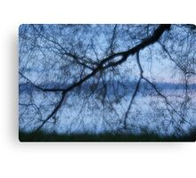 Willow At The Lake Canvas Print