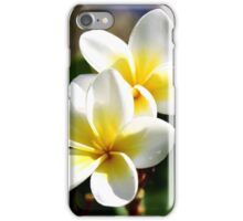 Cuddling Frangipanis  iPhone Case/Skin