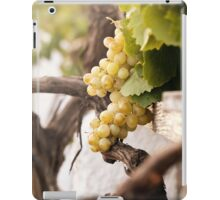 Bunch of white grapes in the vineyard iPad Case/Skin