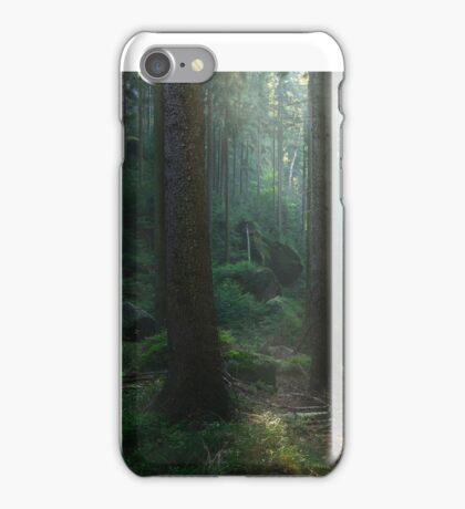 Saxony Forest iPhone Case/Skin