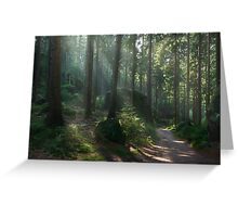Saxony Forest Greeting Card