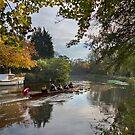 Wey rowers by Rachael Talibart