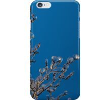 Mother Nature's Christmas Decorations - Gleaming Icy Baubles in Blue iPhone Case/Skin